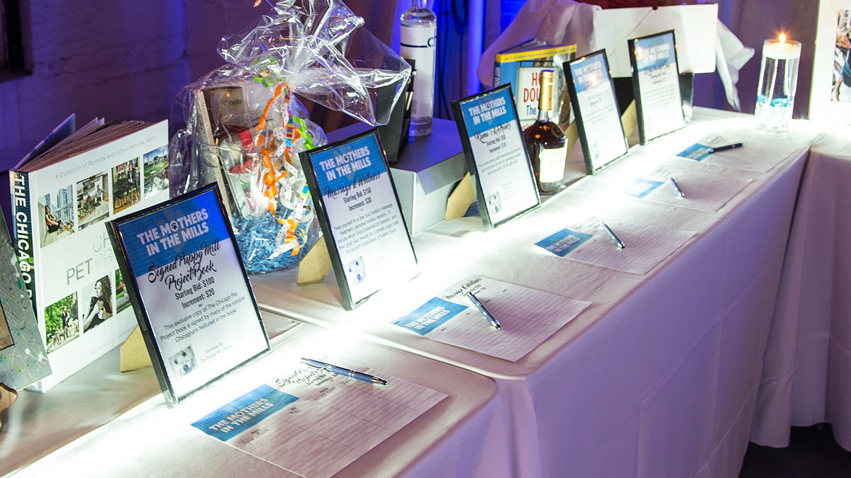 Silent auction at the Puppy mill Project event