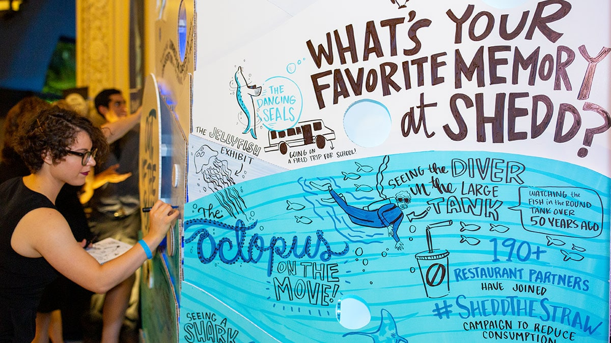 Live drawing at the Shedd Aquarium's annual fundraiser