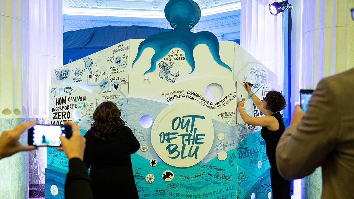Artists draw visual notes at the Shedd's annual fundraiser