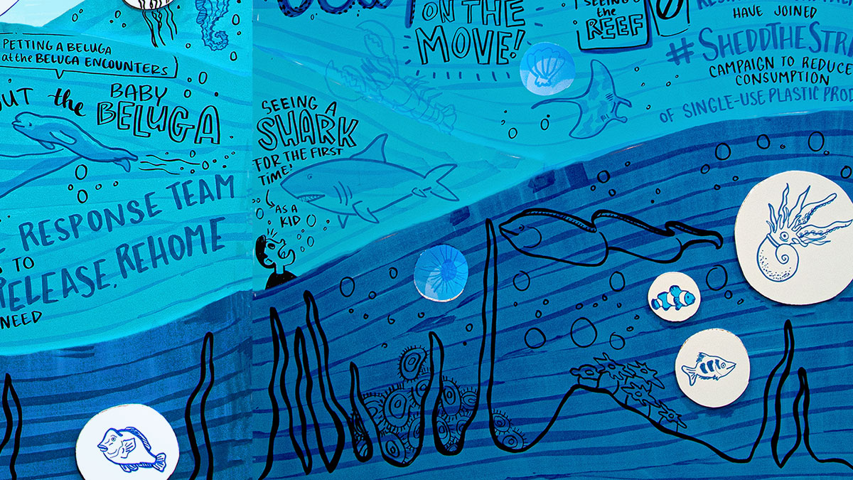 Attendees were asked about their favorite memories at the Shedd, which artists then illustrated