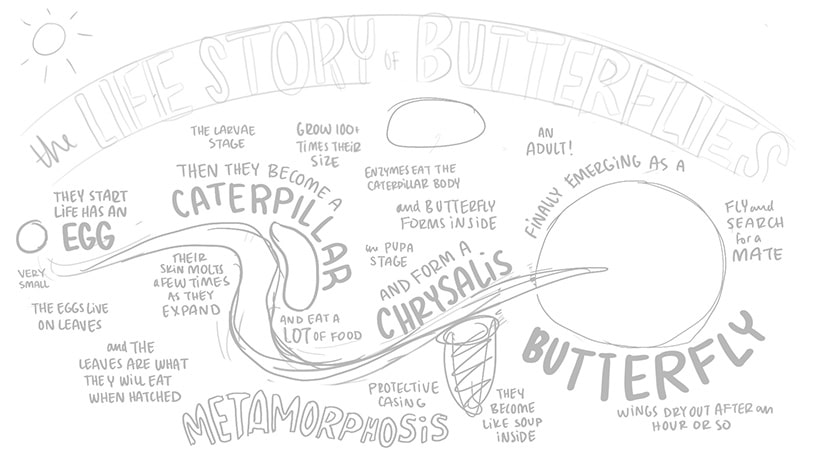Step three sketch for visual storytelling