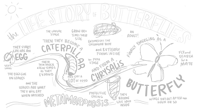 Step four sketch for visual storytelling