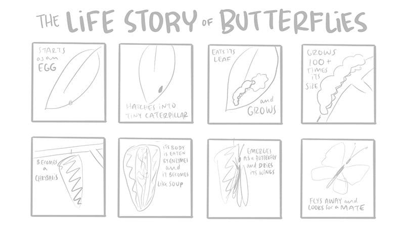 Storyboard panel example of visual narrative